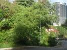 thumb_17464_sam2440.jpg