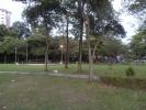 thumb_17832_tamanpinggiranusjsubangjaya20.jpg