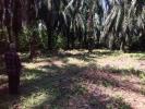 thumb_19516_photo20190114221044.jpg
