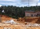 Kelapa Sawit 3.3 ekar Malay Reserve di Kuang, Sg Buloh, Selangor